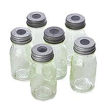 パッケージのガラス6Mini Mason JarライトCovers For文字列ライト
