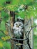 フクロウにあいたい seiseisha mini book series