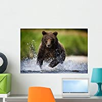 Wallmonkeys Brown Bear Fishing for Spawning Salmon Wall Decal Peel and Stick Graphic WM271648 (24 in W x 16 in H) [並行輸入品]
