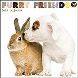 Furry Friends 2015 Wall Calendar [並行輸入品]