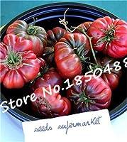 100pcsビッグサポテカひだトマト盆栽、メキシコ家宝果物野菜工場、甘い味、スカラップスライス、干ばつ耐性:I
