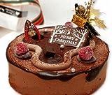 クリスマスケーキ・チョコとイチゴのスペシャルクリスマスケーキ 【12/22着予定・変更可能です】