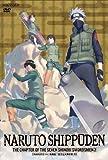 NARUTO-ナルト- 疾風伝 忍刀七人衆の章 2[DVD]