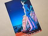 小ポスター、フランス版「風の谷のナウシカ」宮崎駿監督