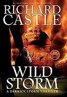 Wild Storm: A Derrick Storm Novel (Derrick Storm 5)