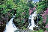1000ピース ジグソーパズル めざせ! パズルの達人 竜頭の滝―栃木(50x75cm)