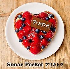 Sonar Pocket「enjoy」のジャケット画像