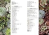 特徴がよくわかる おもしろい多肉植物350 画像