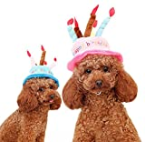 TAONMEISU 犬誕生日帽子 変身 ケーキ型 (ブルー)
