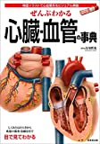 ぜんぶわかる心臓・血管の事典 画像