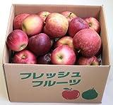 りんご 山形県(朝日町他) 訳ありふじ(りんご) 10kg