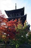 【日本の風景ポストカード】 秋の紅葉・五重塔(京都東山) はがきハガキ葉書2003年