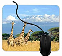 マウスパッド ワイルドキリン, 疲労低減 ワイヤレスマウスパッド 耐久性が良い 滑り止めゴム底 滑りやすい表面 マウス用パット 1F370
