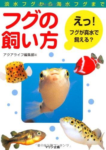 フグの飼い方―淡水フグから海水フグまでの詳細を見る