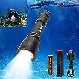 Volador ダイビング懐中電灯 ダイビングライト1000LM 3モード CREE XM-L2 LED採用 水中100Mまで使用可 18650電池や充電器付き