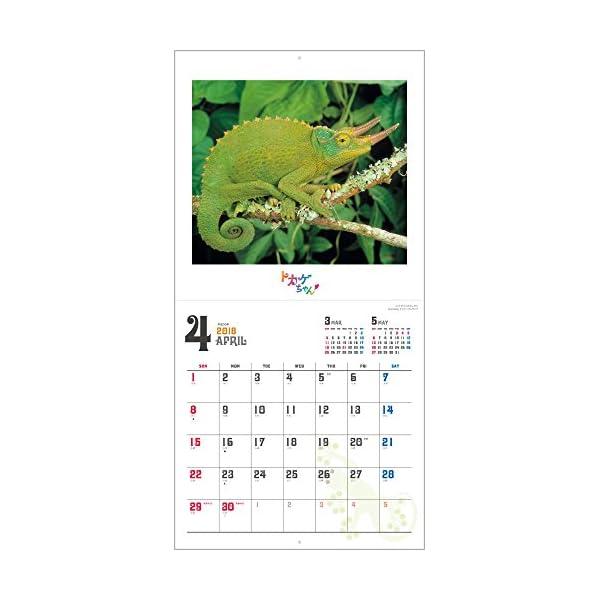 トカゲちゃん 2018年 カレンダー 壁掛け ...の紹介画像7