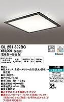 ODELIC(オーデリック) LED和風シーリングライト 調光・調色タイプ LC-FREE Bluetooth対応 【適用畳数:~10畳】 OL251392BC