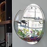 JiaPeng 装飾 金魚鉢 壁掛け アクアリウム 観葉植物 を入れて インテリア にも 鏡面 23cm