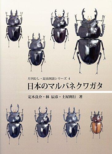日本のマルバネクワガタ (月刊むし・昆虫図説シリーズ)