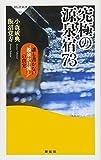 """究極の源泉宿73――誰も書かない""""源泉かけ流し"""