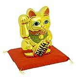 常滑焼 招き猫 黄金小判猫 右手 6号 座布団付き 金