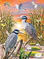 Diyの油絵子供のためのデジタル油絵大人初心者16x20インチ、池の鳥--クリスマスの装飾ホームインテリアギフト (フレーム)