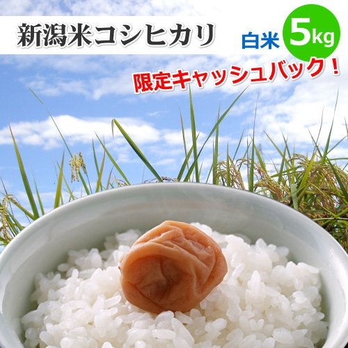 【和歌山県限定】新潟米コシヒカリ【白米】5kg[新潟産こしひかり]和歌山県の方は5%キャッシュバックキャンペーン!
