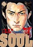 SOUL 2―覇 第2章 (ビッグコミックス)