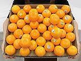 """""""オア オレンジ"""" 40~45玉前後 約5kg イスラエル産 オアマンダリン"""