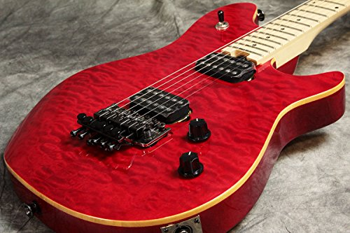 EVH / Wolfgang WG Standard Transparent Red イーブイエイチ