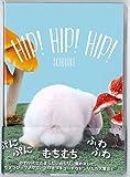 デルフィーノ 2016年手帳 HIP! HIP! HIP! かわいいおしり 【2015年12月始まり】 ブルー B6サイズ HIP-35333
