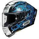 ショウエイ(SHOEI) バイクヘルメット フルフェイス X-Fourteen KAGAYAMA5(カガヤマ5) TC-2(BLUE/BLACK) L(59~60cm) -