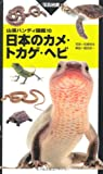 ハンディ10日本のカメ・トカゲ・ヘビ (山溪ハンディ図鑑) 画像