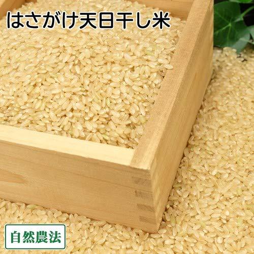 【令和元年度産】田口さんちのはさがけ天日干し米(むつ) 玄米 10kg 無農薬 (青森県 だんごっこファーム) 産地直送 ふるさと21