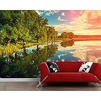 Xbwy 川空風景木雲自然壁紙、リビングルームテレビ壁レストランカフェバーカスタム3 D壁画-200X140Cm