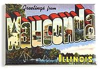 Greetings from Wauconda Illinois冷蔵庫マグネット( 2.5X 3.5インチ)