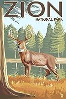 ザイオン国立公園、UT–鹿 24 x 36 Giclee Print LANT-31293-24x36