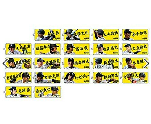 阪神タイガース メッセンジャー 写真入り アクリル ミラーキーホルダー 限定 シークレット