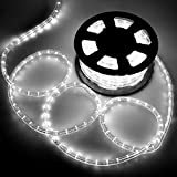 LED チューブライト ロープライト 2芯タイプ 10m 直径10mm イルミネーション 電源付き 高輝度 防水 クリスマス ライト 折り曲げ 造形用 (白(ホワイト) 300球)