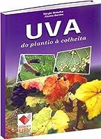Uva. Do Plantio à Colheita