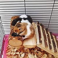 clouday 小動物のおもちゃ ハムスター玩具 トンネル おもちゃ 歯磨き ストレス解消 ハムスター用 おもちゃ 可愛い 木製 ペット用品 トンネル式 鍛え 遊具 小動物 歯ぎしり professional