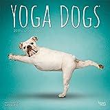 Yoga Dogs 2019 Calendar