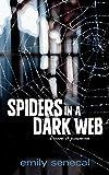 Spiders in a Dark Web (English Edition)