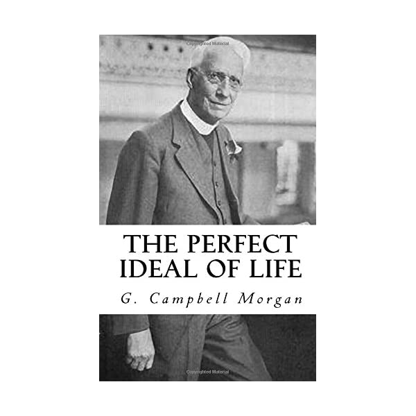 The Perfect Ideal of Lifeの商品画像