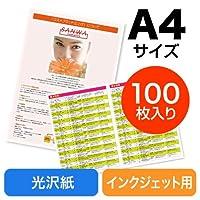 サンワダイレクト インクジェット写真光沢紙 A4 100シート 300-JP026