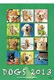 村松誠犬カレンダー 2013 ([カレンダー])