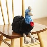 (ミンクプラッシュ)ヒクイドリ(火食い鳥)のぬいぐるみ キャシイ 25cm (S8105)