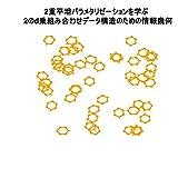 2重平坦パラメタリゼーションを学ぶ: 2のd乗組み合わせデータ構造のための情報幾何 (English Edition)