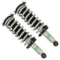Rear Pair Complete Strut Assembly for Subaru Legacy