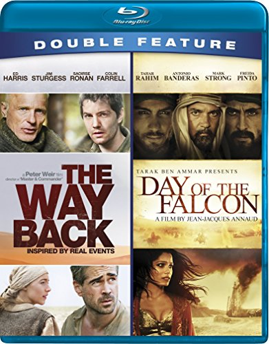 WAY BACK / DAY OF THE FALCON